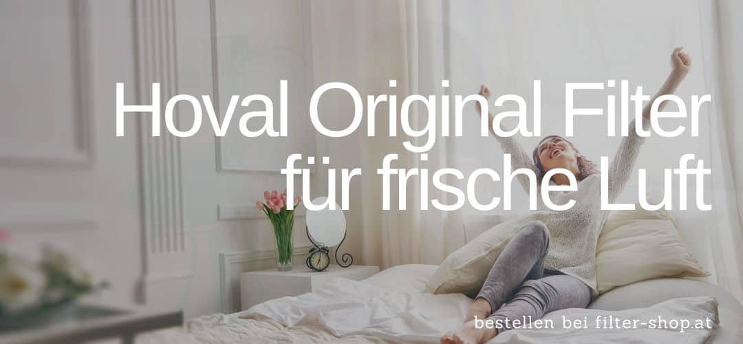Hoval Original Luftfilter
